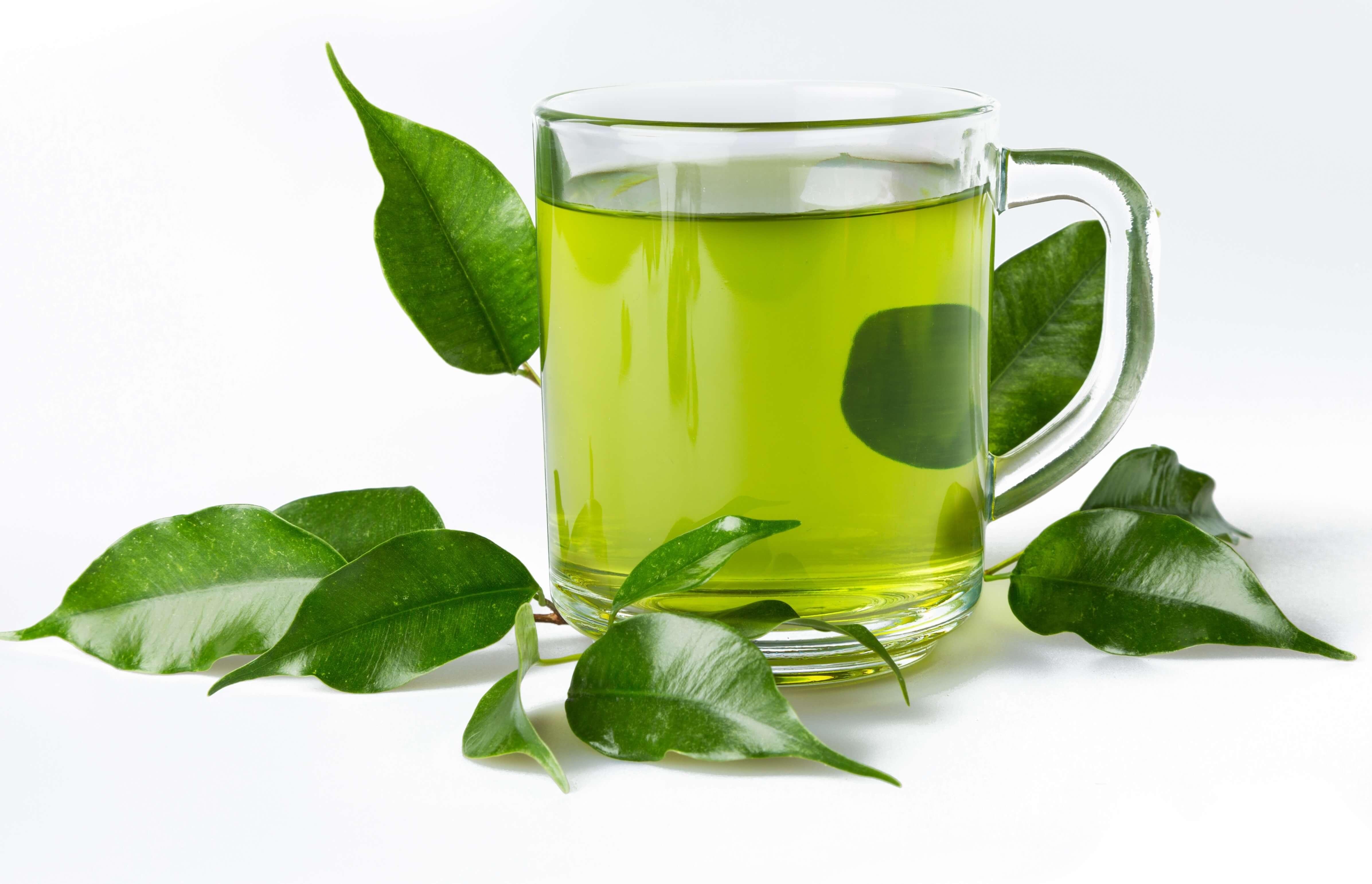 Green Tea Benefits Weight Loss