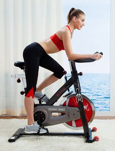 Sunny Health & Fitness SF B1002 Belt Drive Indoor Cycling Bike 2