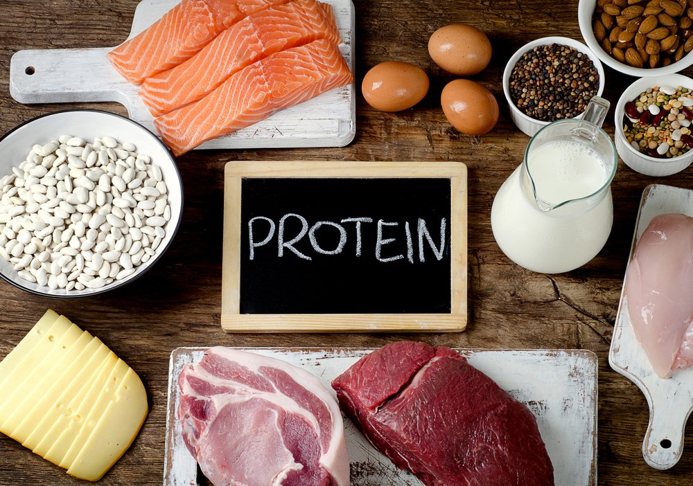 The More High-Protein Foods You Consume, The Less Your Belly Fat Will Be.